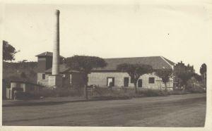 Kunz, Muraro & Cia Ltda. (Flores da Cunha, 1954)