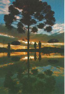 Por do sol da Pousado do Galo Vermelho (Flores da Cunha - 1975)